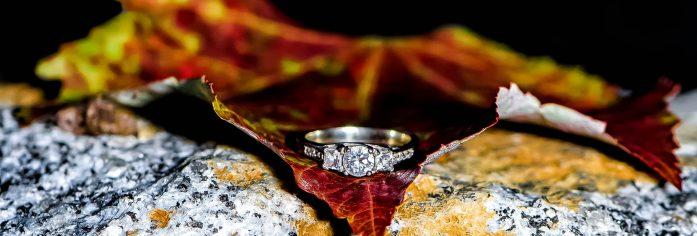 halifax, ns, nova scotia, engagement, photographer, photography, dingle, park, tower, bride, groom, love