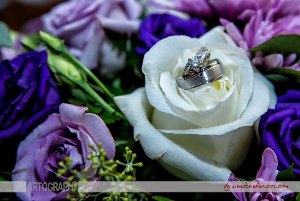 Halifax, Dartmouth, NS, Nova Scotia, wedding, photography, photographer, images, image, photo, photos, Juno tower, stadacona,rings, bouquet, ring, flowers